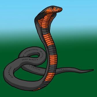 Cobra_rgb